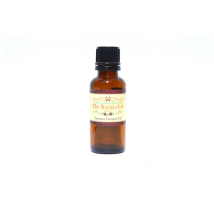 Rose Absolute Blend Pure Essential Oil